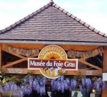 46-46-musee-foie-gras-a-souleilles.jpg