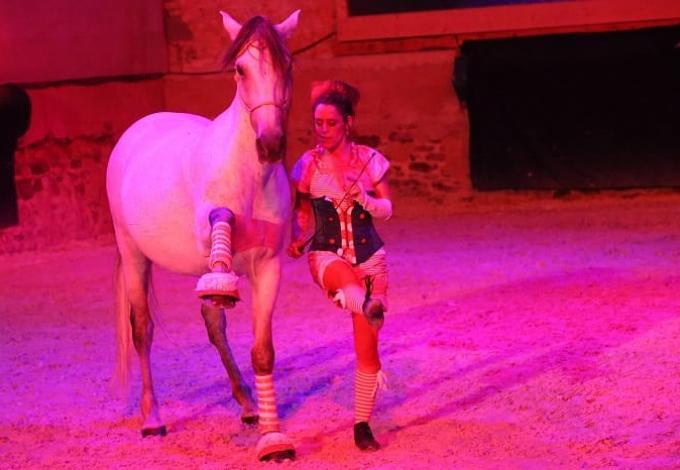 146-chateau-pompadour-spectacle-equestre.jpg