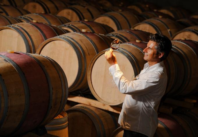 1656-eco-wine-tour-degustation.jpeg