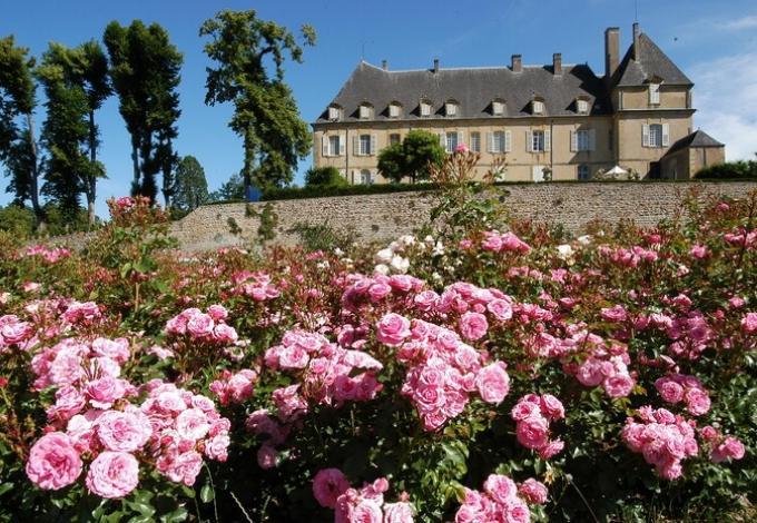 77-jardin-de-dree-la-roseraie.jpg