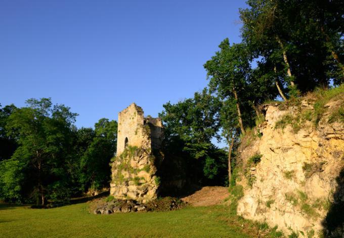 2824-chateau-roquefort-ruines-lugasson-gironde.jpg