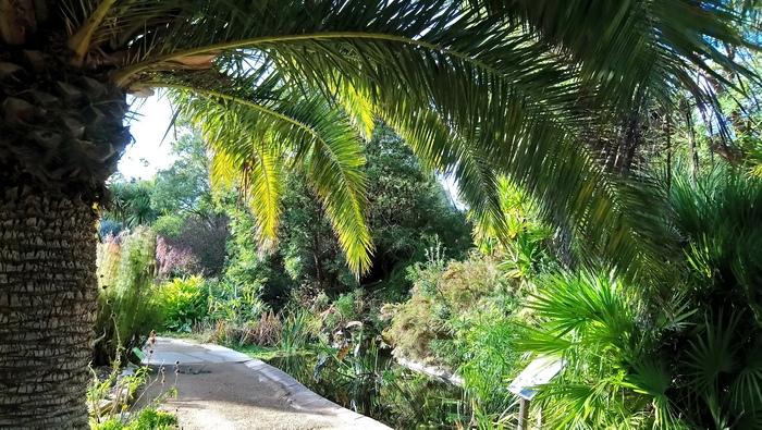 2886-jardin-exotique-roscoff.jpg